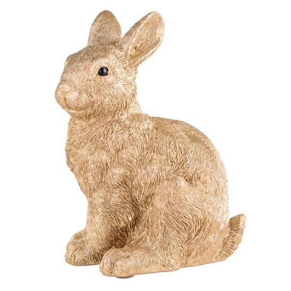 Hase XS gold